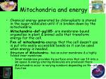 mitochondria and energy