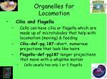 organelles for locomotion
