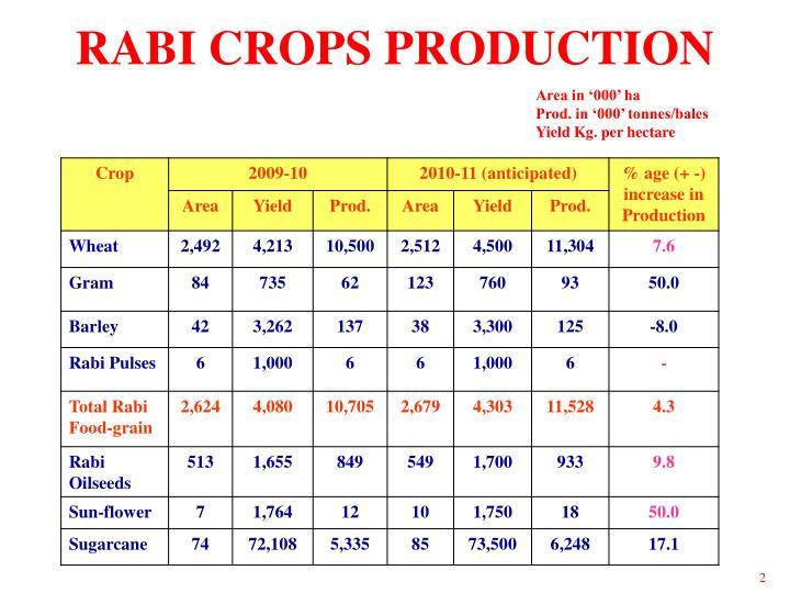 Rabi crops production