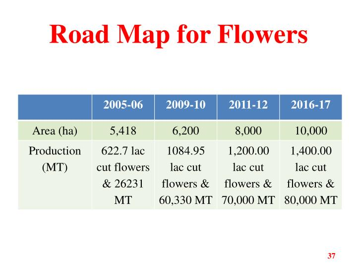 Road Map for Flowers