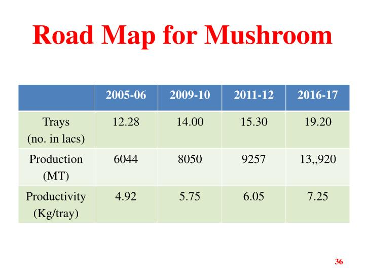 Road Map for Mushroom