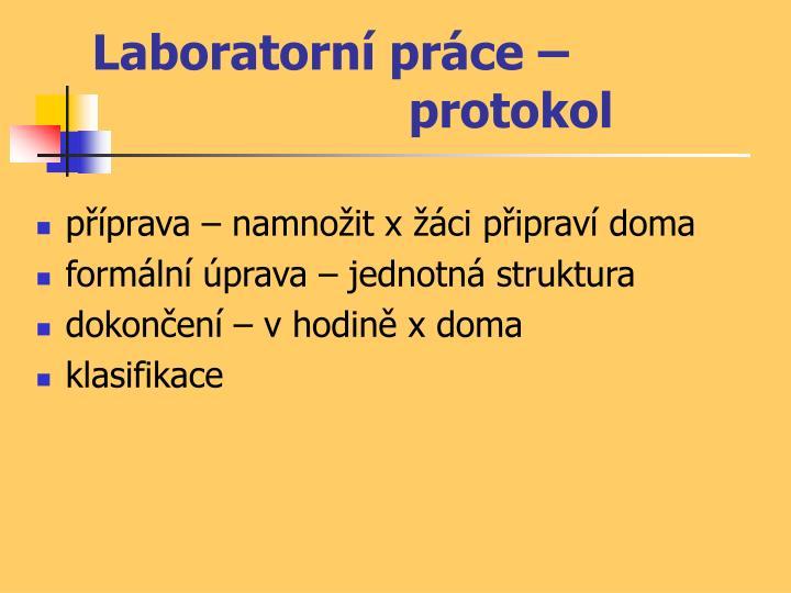 Laboratorní práce – protokol