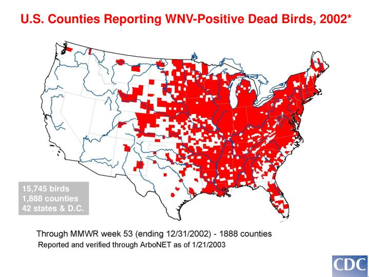 U.S. Counties Reporting WNV-Positive Dead Birds, 2002*