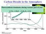 carbon dioxide in the atmosphere