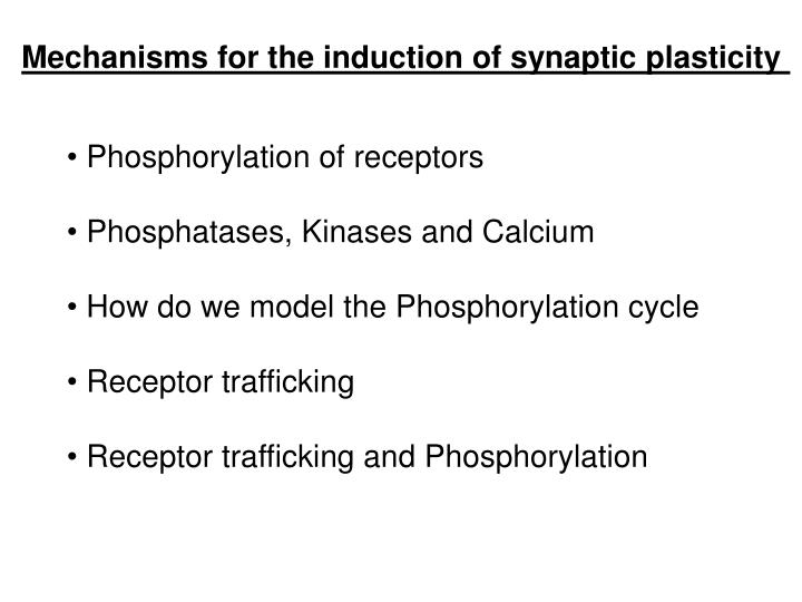 Mechanisms for the induction of synaptic plasticity