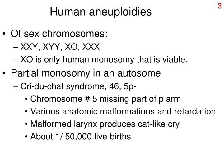 Human aneuploidies