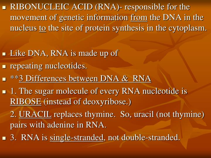 RIBONUCLEIC ACID (RNA)- responsible for the movement of genetic information
