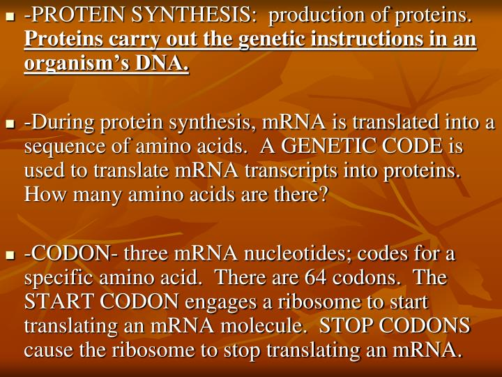 -PROTEIN SYNTHESIS:  production of proteins.