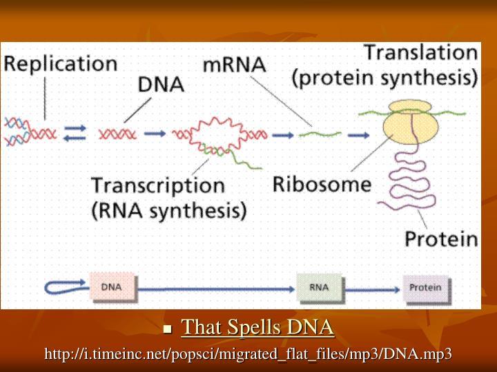 That Spells DNA