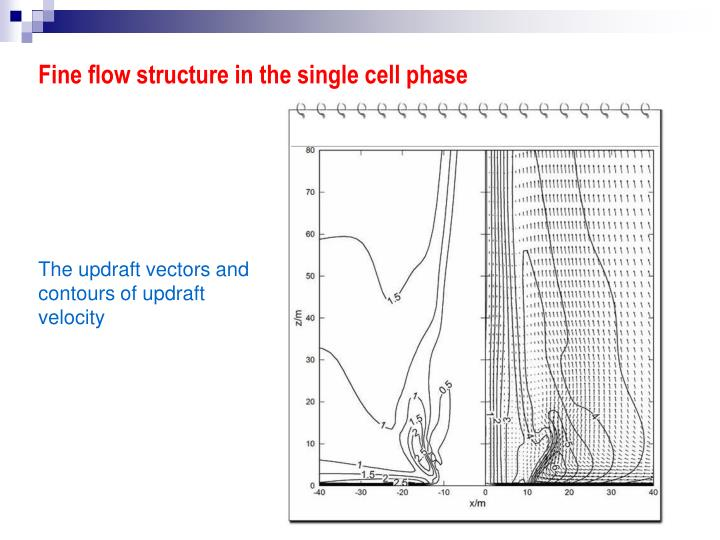 Fine flow structure in the single cell phase