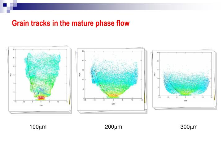 Grain tracks in the mature phase flow