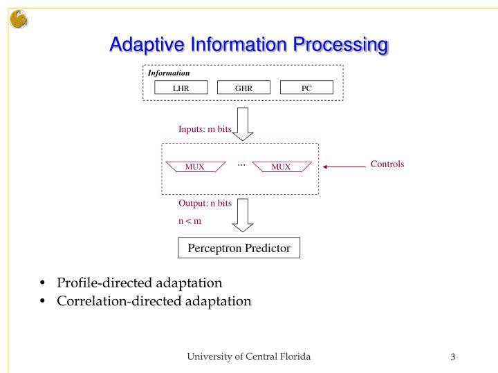 Adaptive information processing