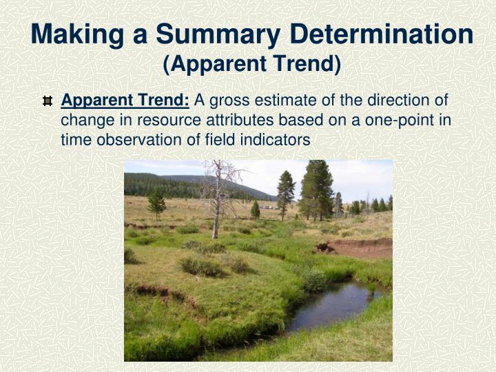 Making a Summary Determination