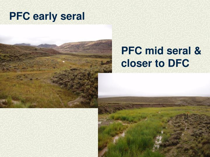 PFC early seral