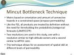 mincut bottleneck technique