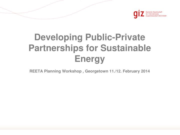 developing public private partnerships for sustainable energy n.