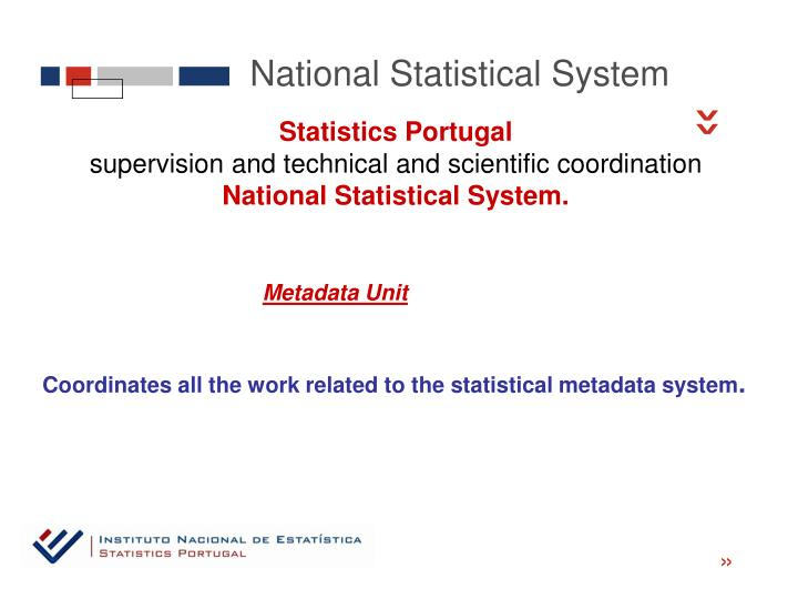 National Statistical System