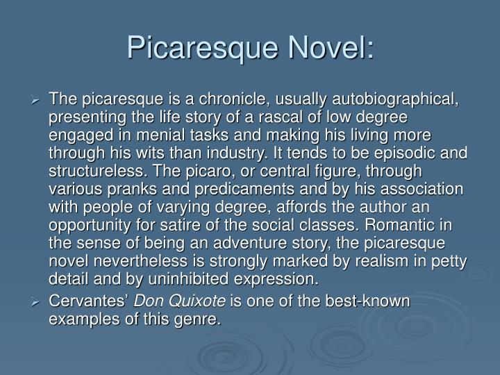 Picaresque Novel: