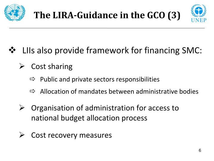 The LIRA-Guidance in the GCO (3)