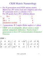 ckm matrix numerology