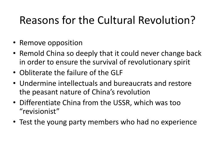 Reasons for the Cultural Revolution?