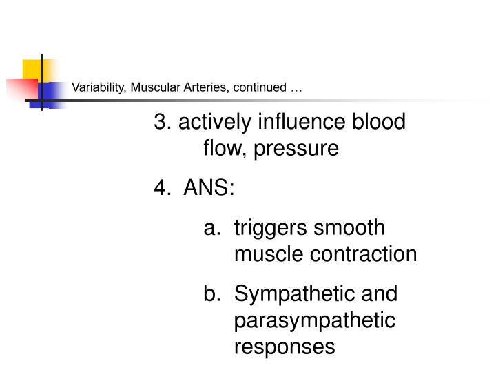 Variability, Muscular Arteries, continued …