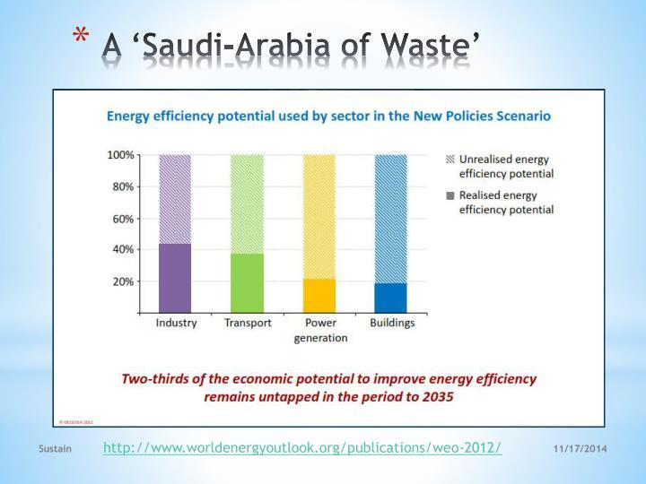 A 'Saudi-Arabia of Waste'