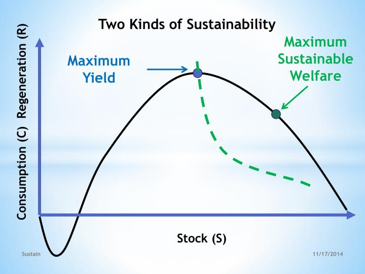 Two Kinds of Sustainability