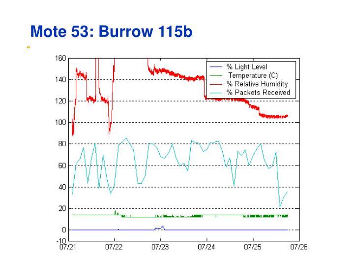 Mote 53: Burrow 115b