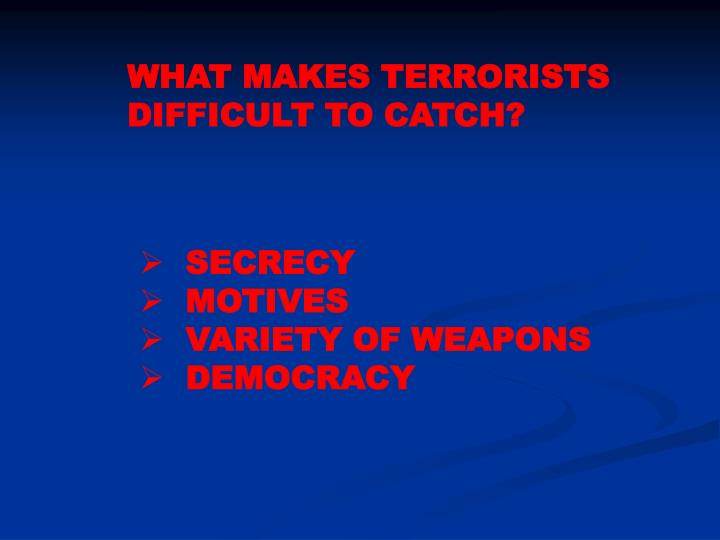 WHAT MAKES TERRORISTS