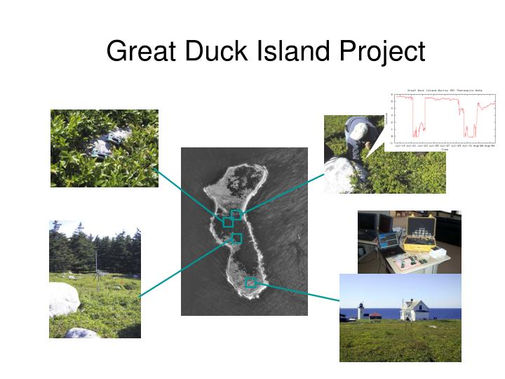 Great Duck Island Project