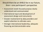 should there be an ahelo be in our future then one participant s perspective