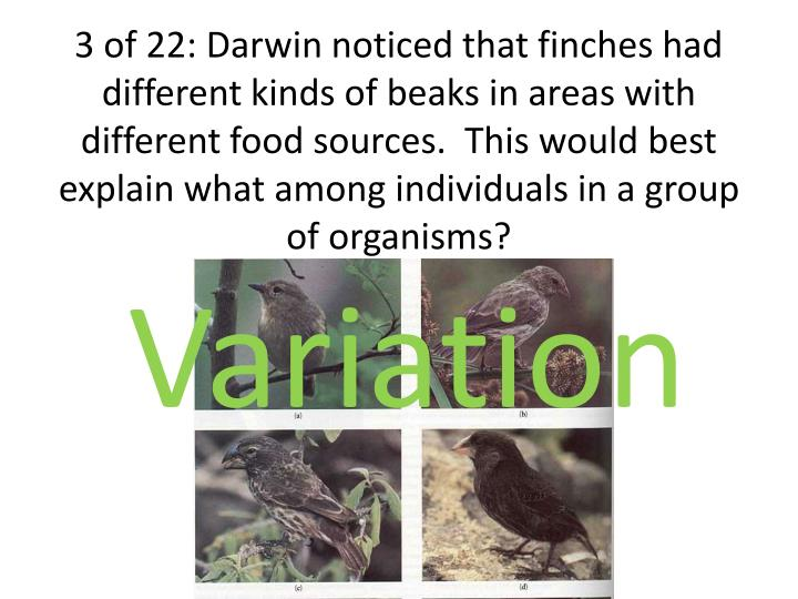 3 of 22: Darwin noticed that finches had different kinds of beaks in areas with different food sources.  This would best explain what among individuals in a group of organisms?