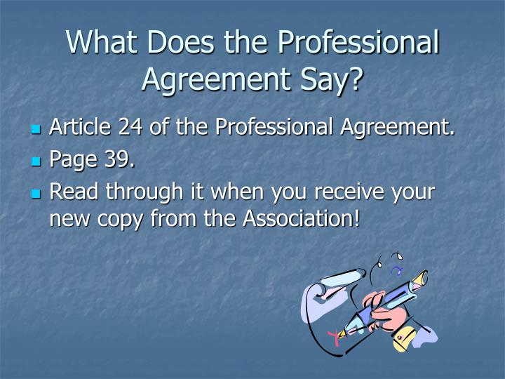 What does the professional agreement say