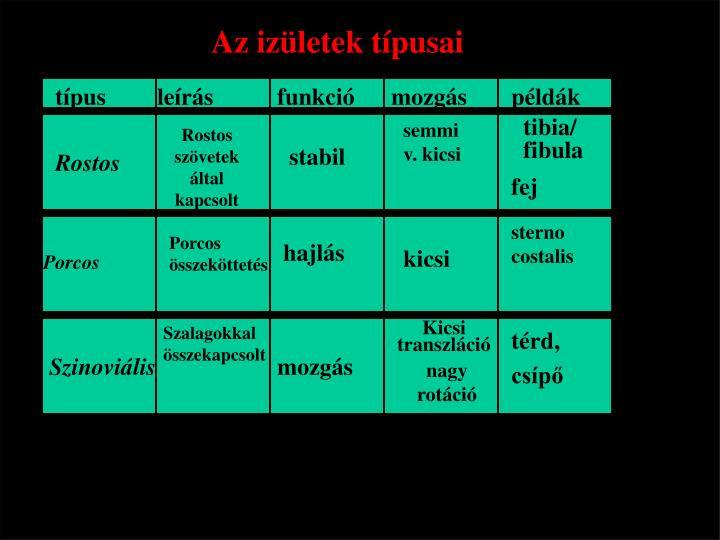 tibia/ fibula