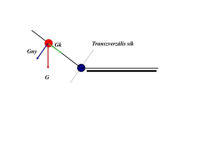 Transzverzális sík