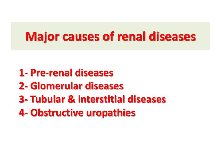 Major causes of renal diseases