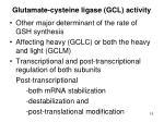 g lutamate cysteine ligase gcl activity