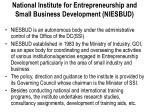 national institute for entrepreneurship and small business development niesbud