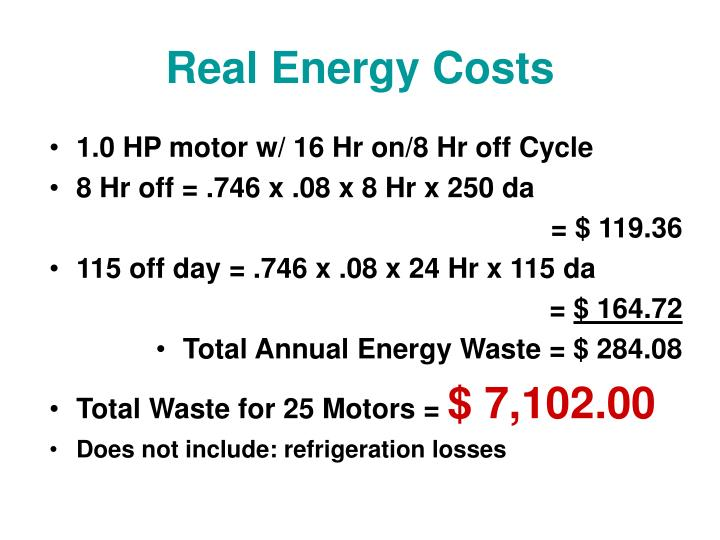 Real Energy Costs
