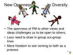 new openness to diversity