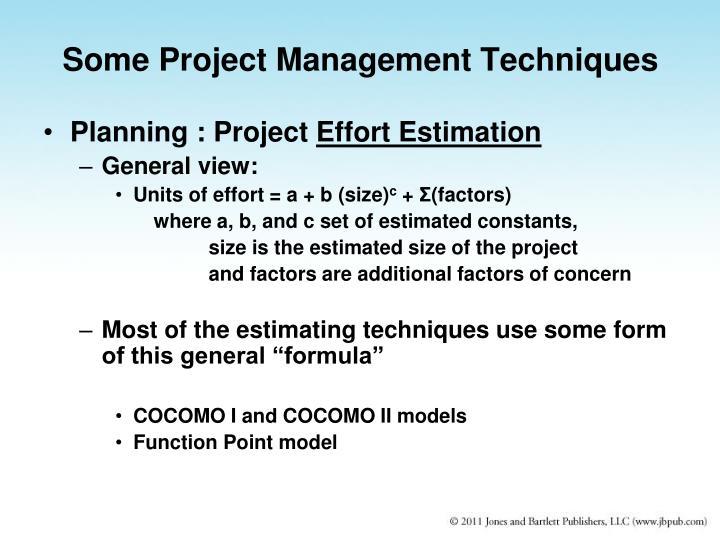 Some Project Management Techniques