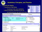 guidelines principles and theories6