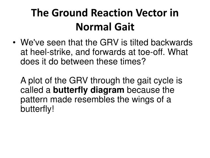 The Ground Reaction Vector in Normal Gait