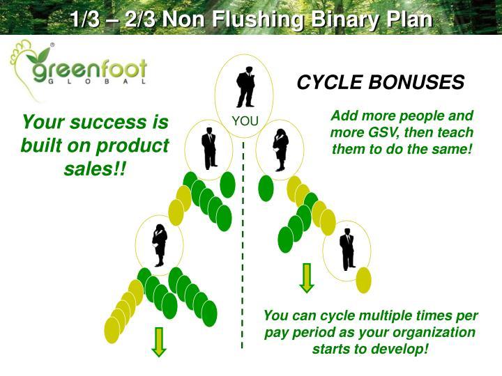 1/3 – 2/3 Non Flushing Binary Plan
