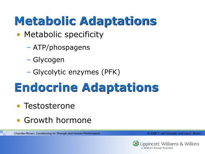 Metabolic Adaptations
