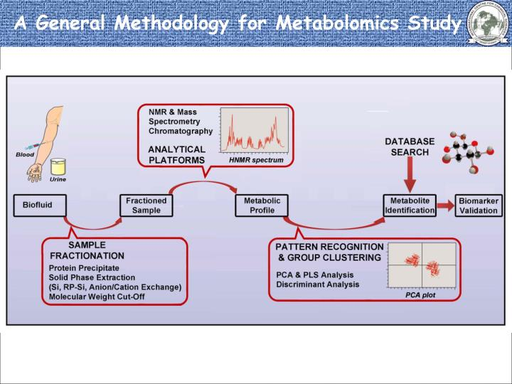 A General Methodology for Metabolomics Study