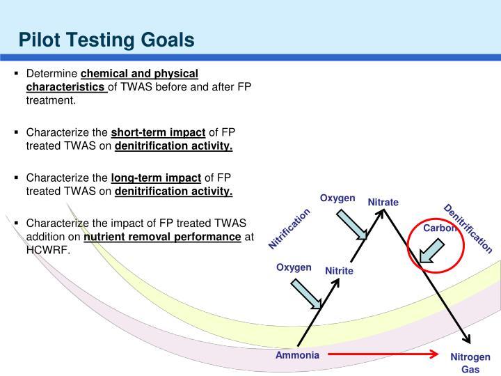 Pilot Testing Goals