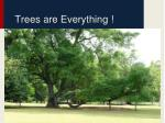 trees are everything