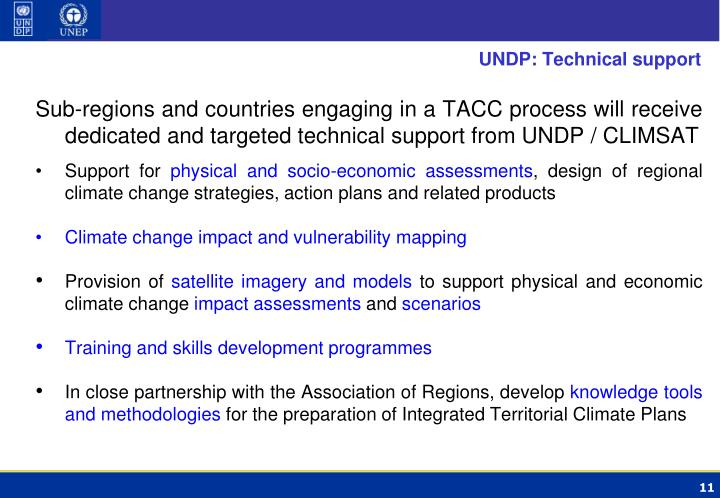 UNDP: Technical support